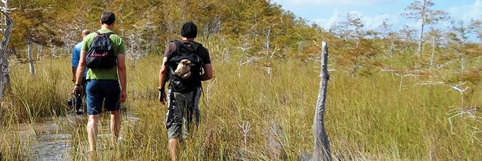 Wanderung zum Alligatorenloch