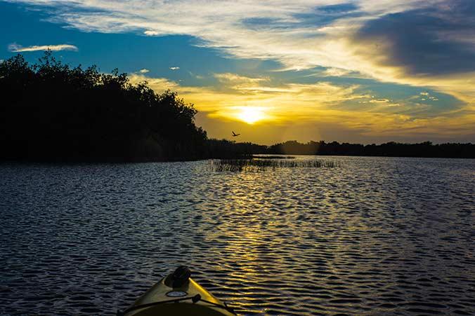 Sonnenuntergang in den Everglades