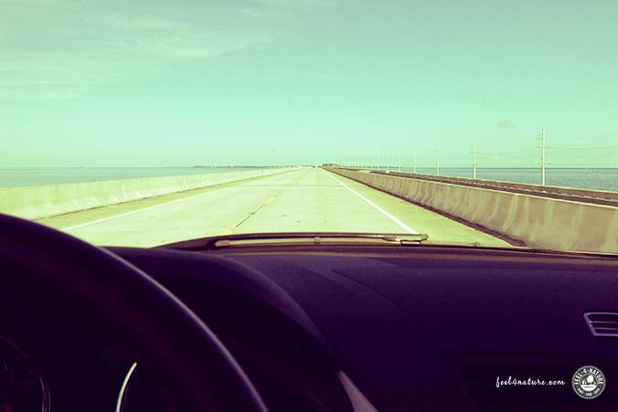 Strasse nach Key West