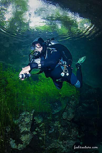 Cenote Adventure Tauchen