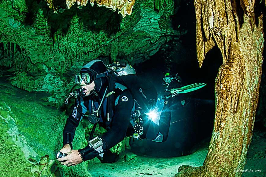 Cenote Adventures Tropfsteine