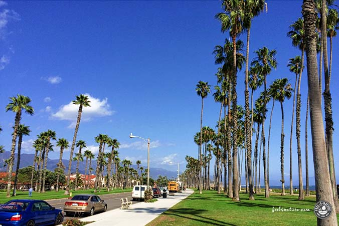 Santa Barbara Scenic Drive