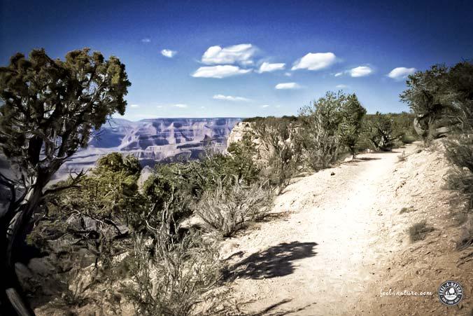 Natural Grand Canyon Rim Trail