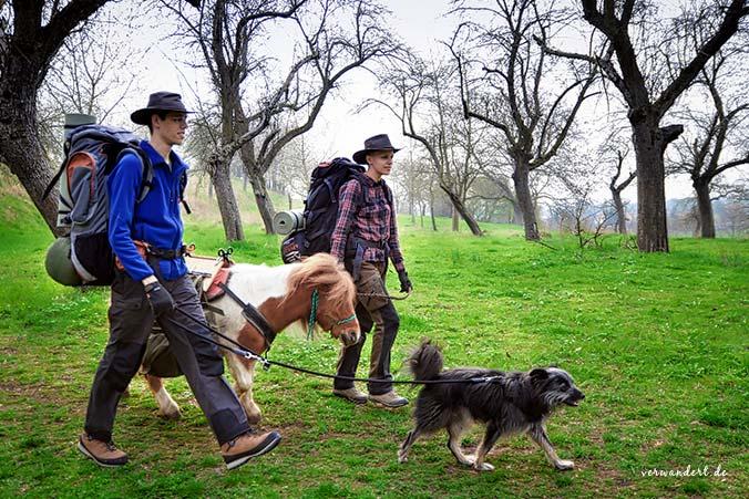 Wandern mit Hund und Pferd