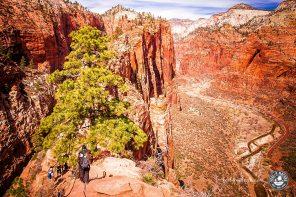 Unsere Wanderung auf dem Angels Landing Trail im Zion Nationalpark