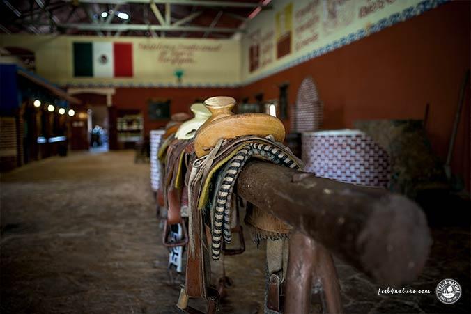 Mayapan Tequila Destilerie