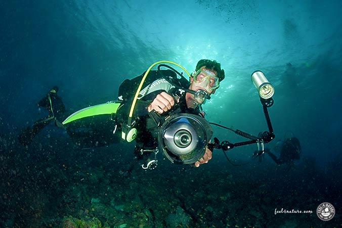 Marco Unterwasserfotograf