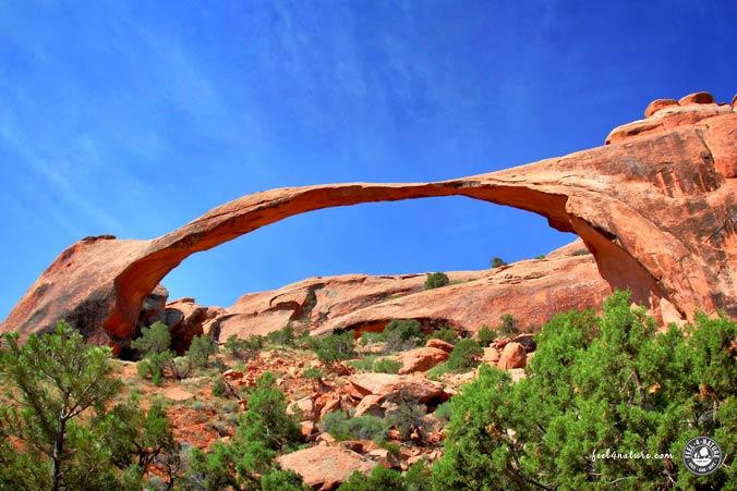 Nationalparks Südwesten - Arches