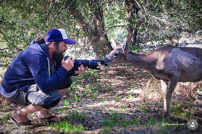 Outdoor Fotografie Tiere