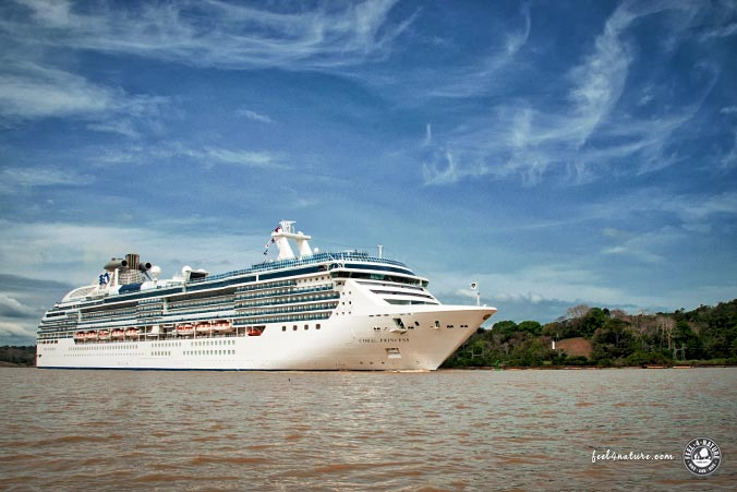 Kkreuzfahrtschiff Panamakanal