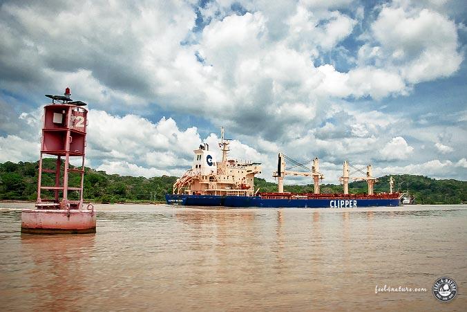 Ozeanriesen Panamakanal