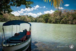 Unsere Panamakanal Tour in ein vergessenes Paradies