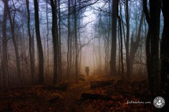 Appalachian Trail Wandern