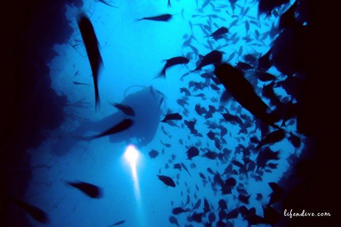 Tauchen Malediven - Höhle