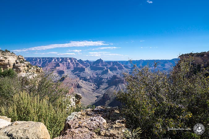 Ausblick Grand Canyon