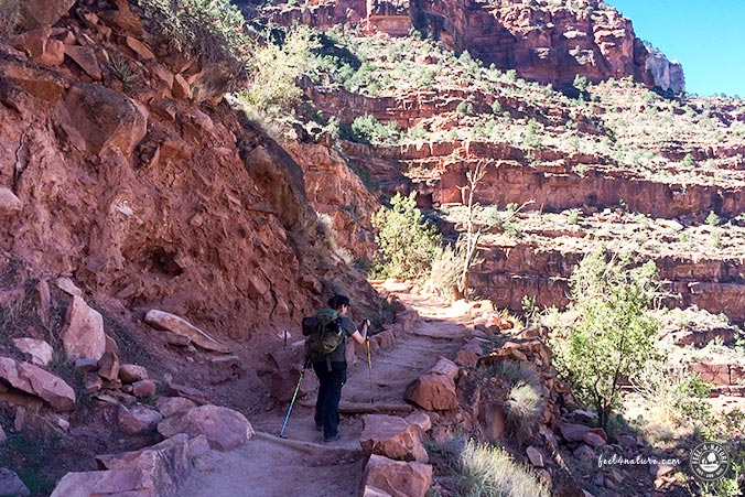 Bright Angel Trail - Schatten