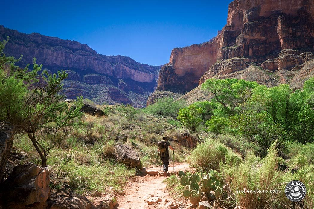 Bright Angel Trail - Grand Canyon