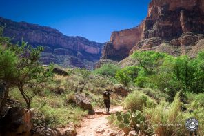 Auf dem Bright Angel Trail in die Tiefen des Grand Canyon