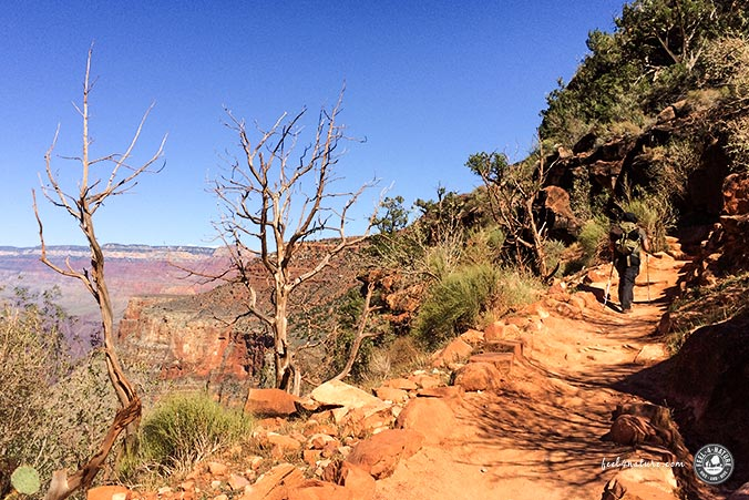 Bright Angel Trail im Grand Canyon NP