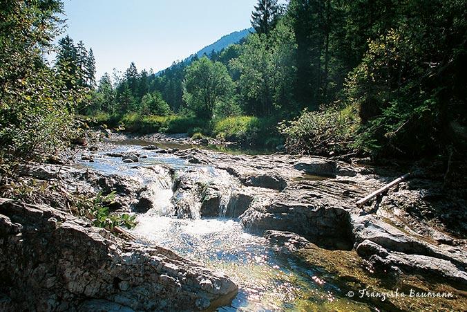 Bayerische Alpen Wildbach