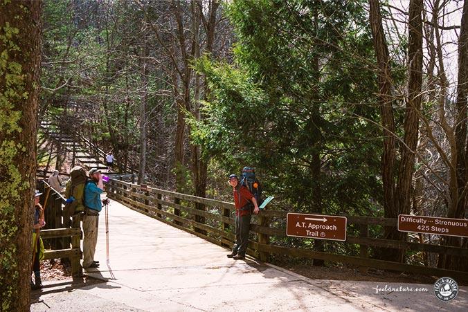 Amicalola Falls Ursprung
