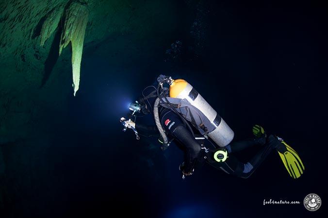 Höhlentauchen - Cenoten Mexico