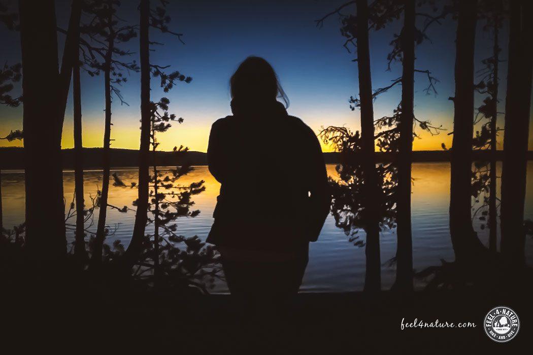 Sehnsucht - Stille
