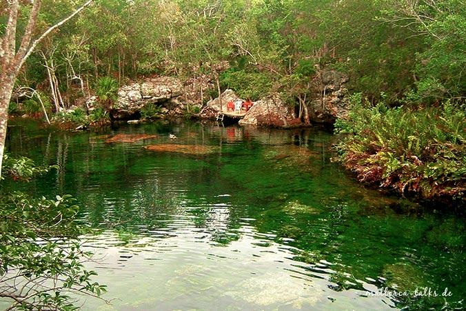 Höhlentauchen - Cenote Mexico