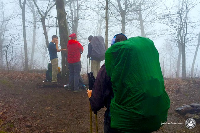 Appalachian Trail Nebel