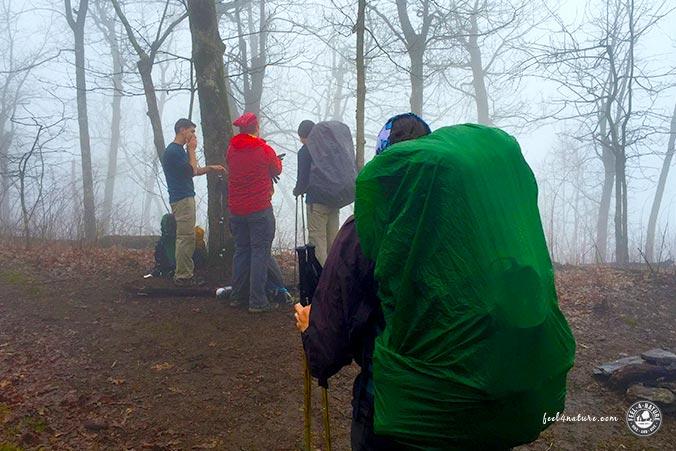 Appalachian Trail Nebel