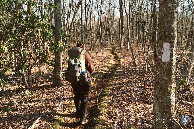 Appalachian Trail Wanderweg