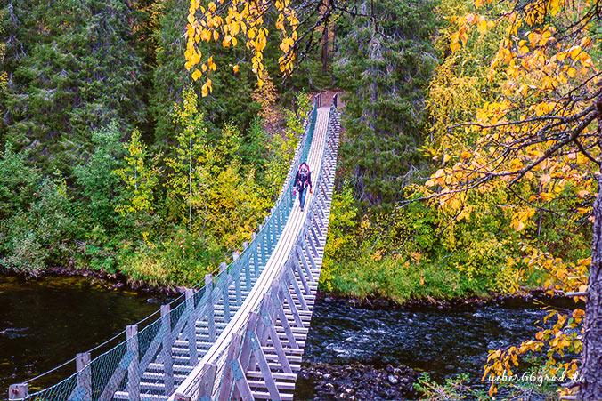 Bärenrunde Hängebrücke