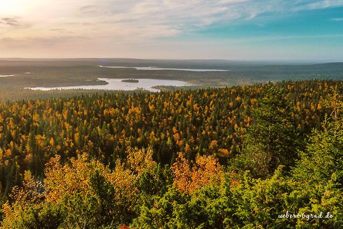 Bärenrunde Herbst