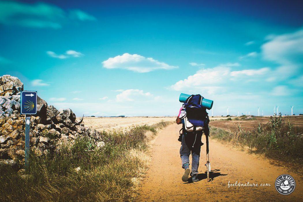 Jakobsweg alleine Wandern