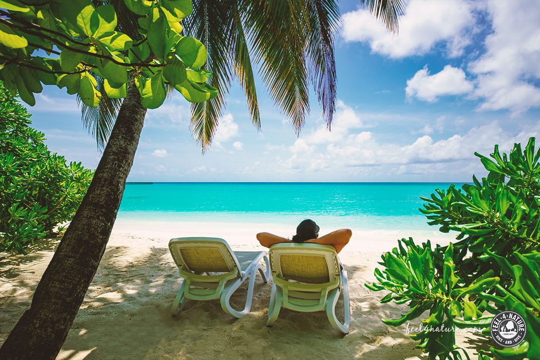 Kuramathi Malediven Urlaub
