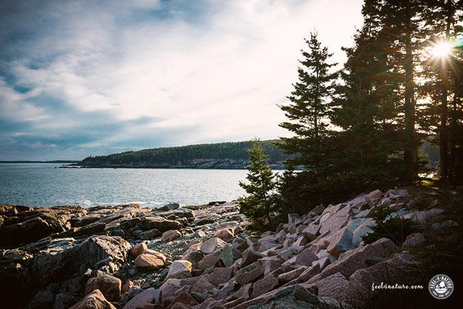 Trekking Acadia NP
