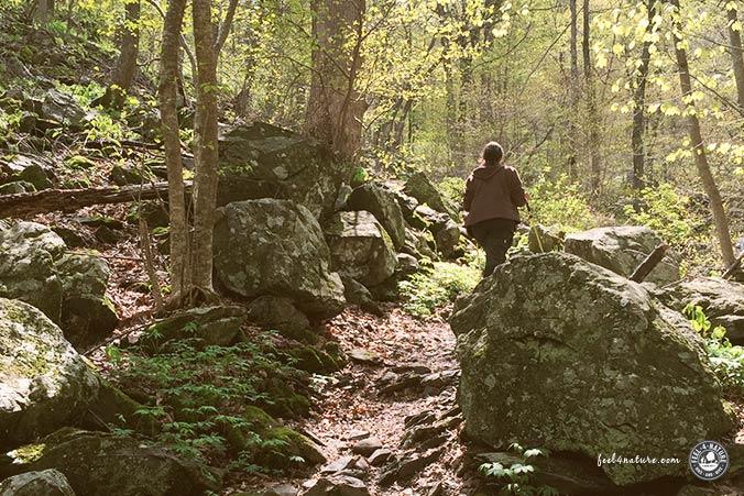 Wanderglück Natur