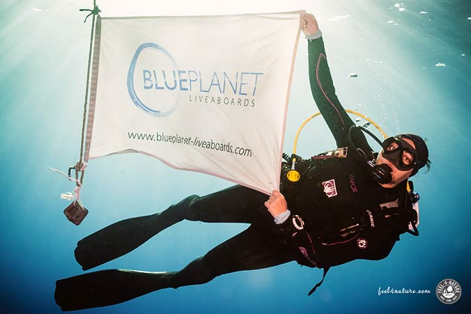 Tauchsafari Blue Planet Liveaboards