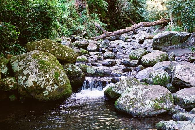 Wanderwege Lamington Nationalpark