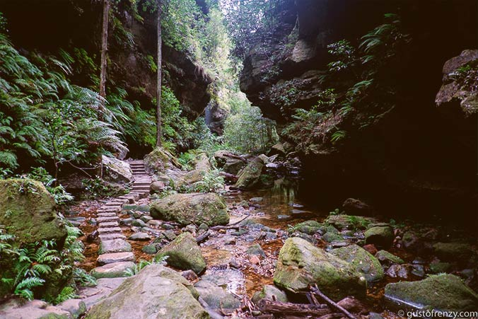 Blue Mountains Canyon Walk