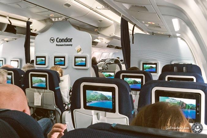 Condor Premium Class Las Vegas