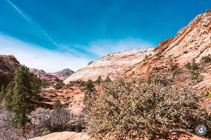 Road Trip Zion Nationalpark