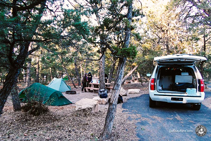 Grand Canyon Camping Mather
