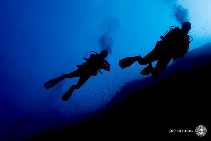 Unterwasserfotografie Einsteigen