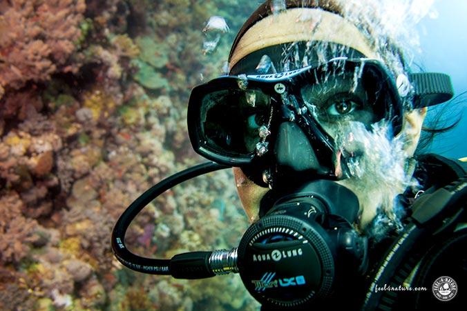 Unterwasserfotografie Tipps Weitwinkel