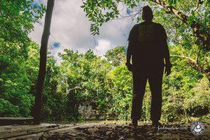 Cenoten Tauchen in Mexiko mit Stefan von Cenote Adventures