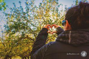 Umweltschutz im Alltag, 22 einfache Tipps für jedermann