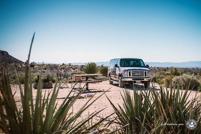 Camper Mojave USA