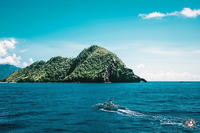 Tauchen Asien Fischer