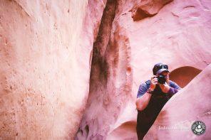 Fotografieren für Anfänger mit 10 ultimativen Fototipps